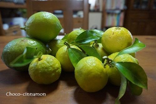 柚子と檸檬.JPG