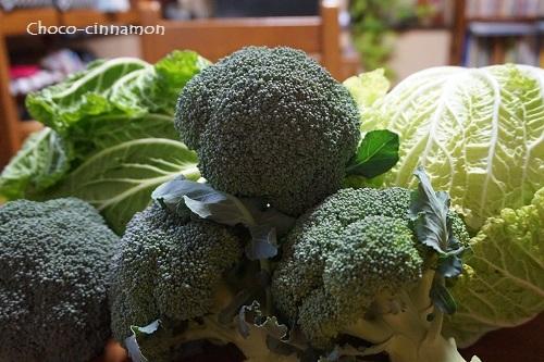 白菜とブロッコリー.JPG